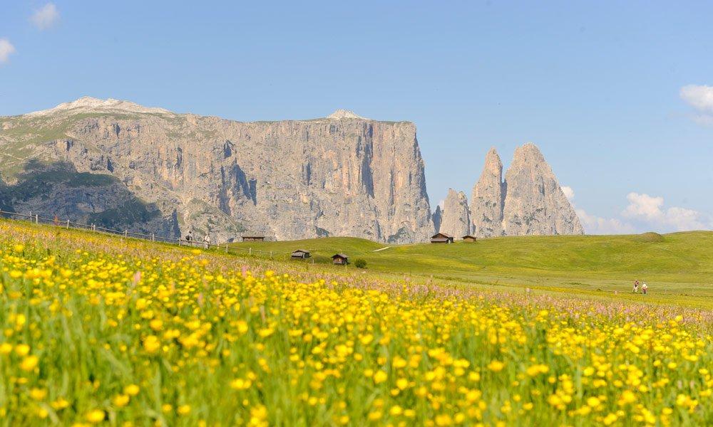 Giro escursionistico ad ovest dell'Alpe di Siusi